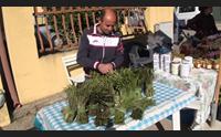 gesturi la giornata verde protagonisti gli asparagi in cucina