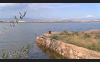cagliari a santa gilla il porto di san pietro un museo a cielo aperto