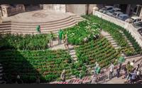 cagliari mettete dei fiori nei vostri balconi il comune regala 4000 piante