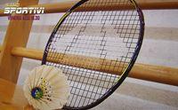 gli strumenti di gioco del badminton
