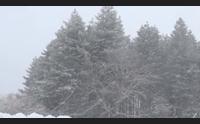 ancora neve in barbagia nella tempesta si ricorda la tragedia del 1913