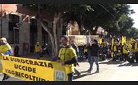 cagliari giovani in piazza per celebrare il funerale dell agricoltura