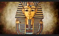 barumini il direttore del museo egizio una rete con i musei sardi
