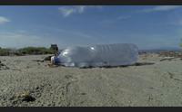 giorgia palmas col wwf per la campagna spiagge plastic free