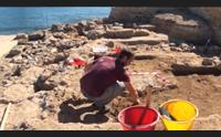 pula a nora i nuovi scavi e le ultime scoperte in mostra per i visitatori