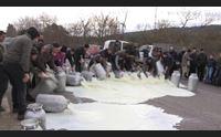 guerra del latte la protesta dilaga in tutta l isola non ci fermiamo