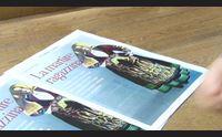il martirio di antonia mesina da domani la cronaca su l unione sarda