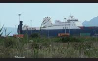 bombe sarde partita la nave saudita isola crocevia per gli armamenti