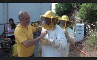 ales la vendemmia del miele con il progetto di agricoltura sociale gicoias
