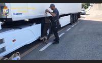 cocaina nascosta nel camion 38enne oristanese arrestato a olbia