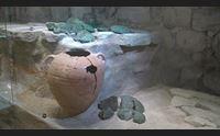 alghero boom di turisti per grotta di nettuno e siti archeologici
