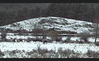 neve in ogliastra e nel nuorese inizio primavera con coda di inverno