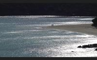 teulada la spiaggia di teurredda va preservata ingresso per 1100 bagnanti