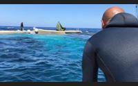 mattanza da record a portoscuso in rete anche un tonno da 370 chili