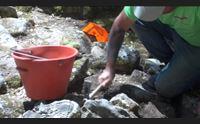bitti dopo vent anni scavi a romanzesu archeologia volano per il turismo