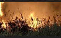 cagliari firmato il protocollo sulla campagna antincendio