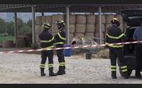 arborea tragedia in un azienda zootecnica muore allevatore