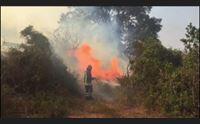da nord a sud incendiari scatenati la sardegna continua a bruciare