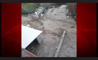 bitti pasqua di malinconia dove sono i ristori del post alluvione