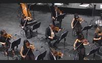 al teatro lirico la musica di franz liszt in diretta alle 21 su videolina