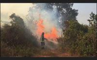 incendi in campo anche i vigili del fuoco per coordinamento rafforzato