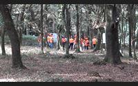 sul monte arci forestas forma i professionisti della tutela dei boschi